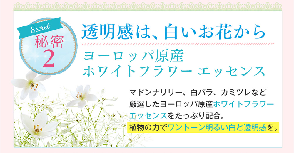 秘密2 透明感は、白いお花から ヨーロッパ原産ホワイトフラワーエッセンス